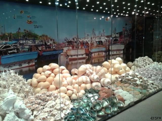 музей ракушек пхукет