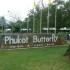 парк бабочек пхукет