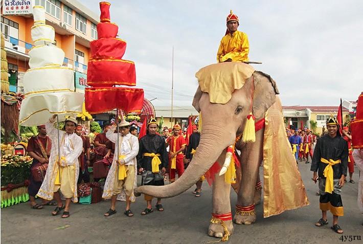 день слона тайланд