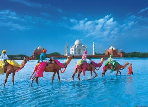 Как съездить в Индию дешево